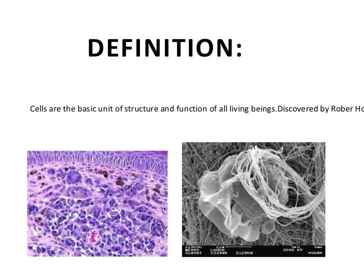 C:UsersdartyDesktopimages (4).jpg C:UsersdartyDesktopimages (5).jpg Cells are the basic unit of structure and function of ...