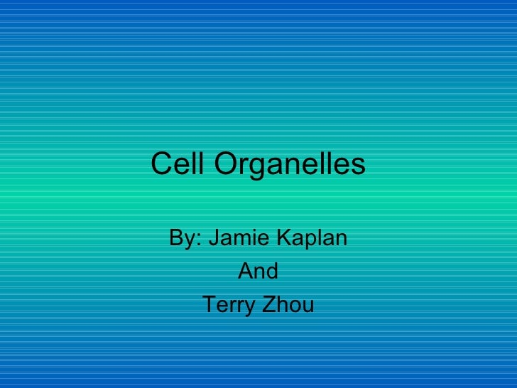 Cell Organelles By: Jamie Kaplan And Terry Zhou