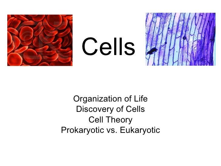 Cells Organization of Life Discovery of Cells Cell Theory Prokaryotic vs. Eukaryotic