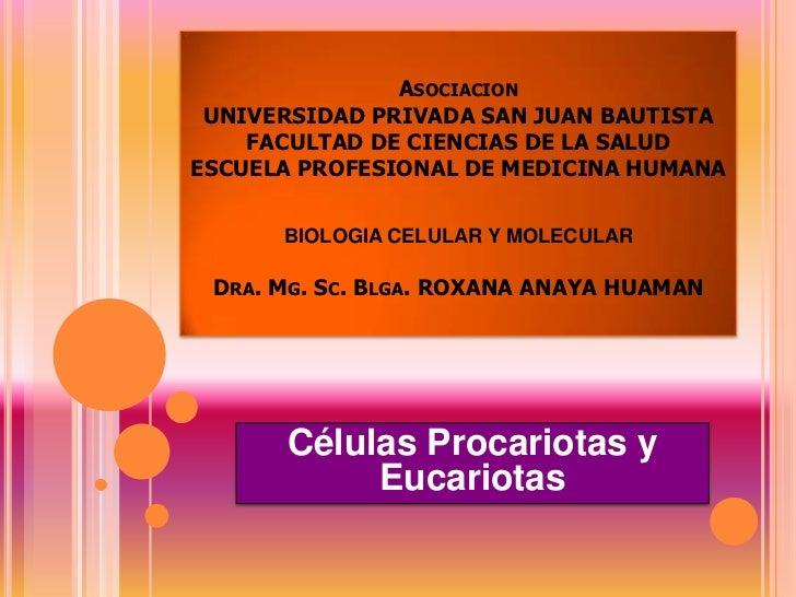 AsociacionUNIVERSIDAD PRIVADA SAN JUAN BAUTISTAFACULTAD DE CIENCIAS DE LA SALUDESCUELA PROFESIONAL DE MEDICINA HUMANABIOLO...