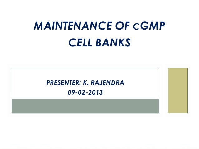 MAINTENANCE OF CGMP       CELL BANKS PRESENTER: K. RAJENDRA       09-02-2013