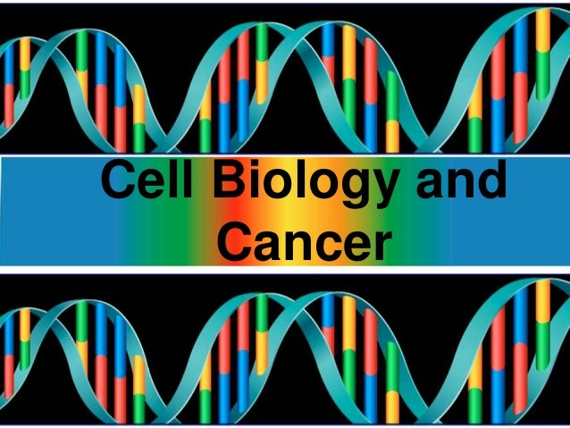 Cell Biology and Cancer