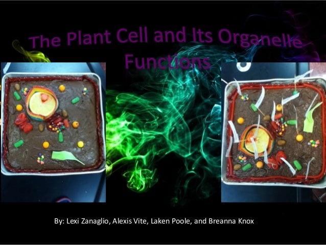 Cell cake project