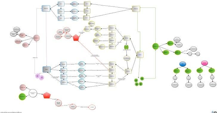 Cell Cycle Concept Map Cell Cycle Concept Map Sample