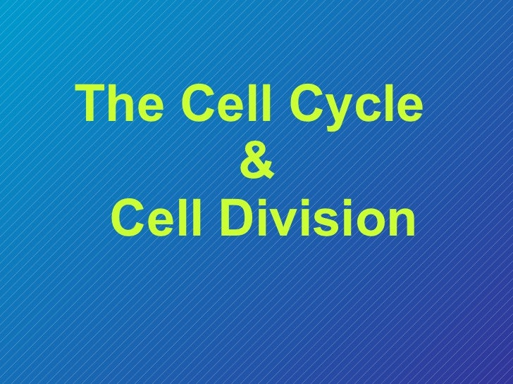 Cell division lec