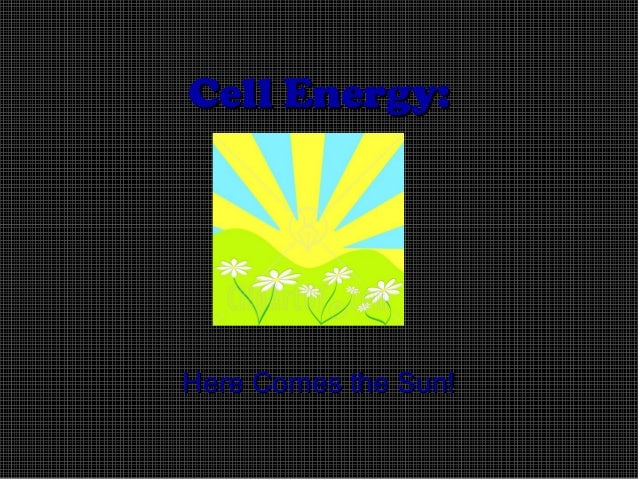 Cell Energy:  Here Comes the Sun!