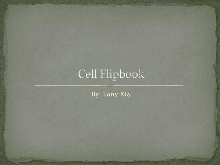 Cell flipbook
