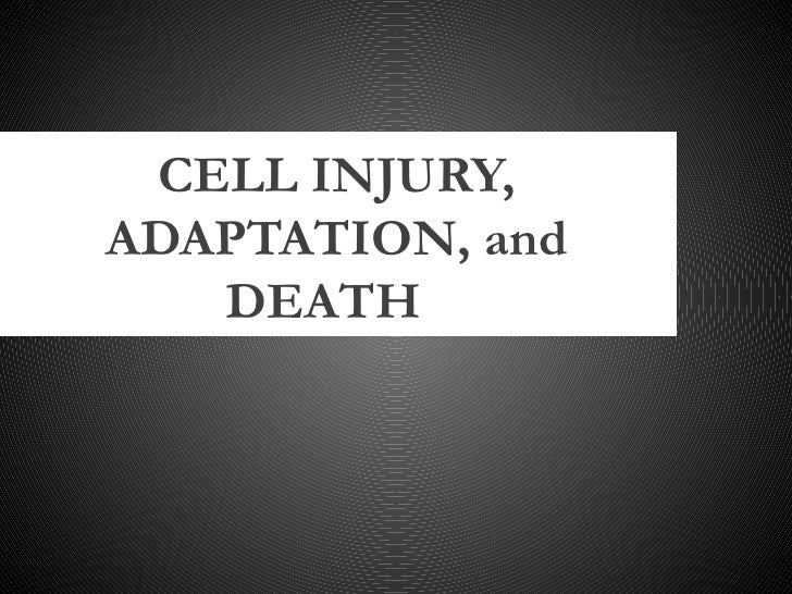 CELL INJURY,ADAPTATION, and   DEATH