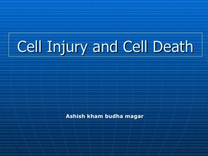 Cell  Injury And  Cell  Death (2006)(1)