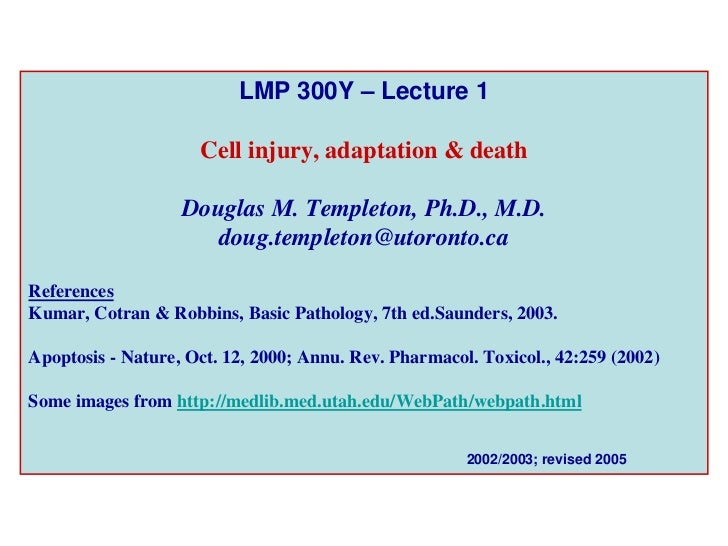 LMP 300Y – Lecture 1                       Cell injury, adaptation & death                     Douglas M. Templeton, Ph.D....