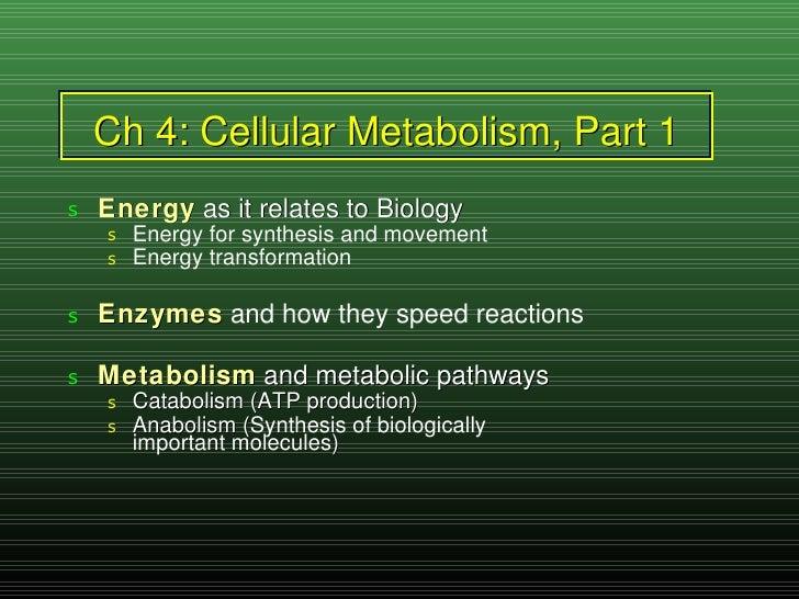 Ch 4: Cellular Metabolism, Part 1 <ul><li>Energy  as it relates to Biology </li></ul><ul><ul><li>Energy for synthesis and ...