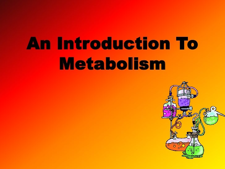 An Introduction To Metabolism<br />