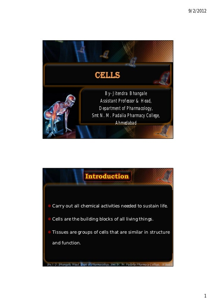 Cells by JITENDRA BHANGALE