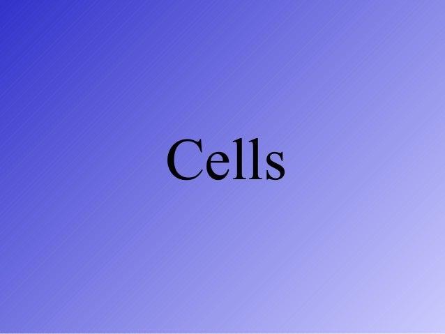 Cells 2013 14