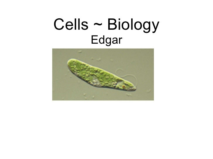 Cells ~ Biology Edgar