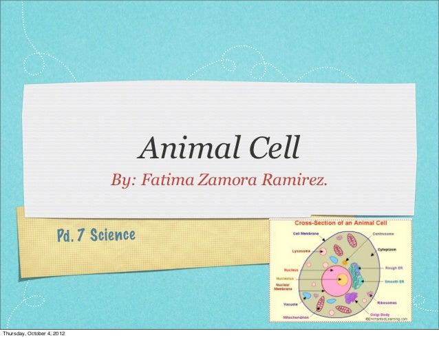 Animal Cell                                By: Fatima Zamora Ramirez.                     Pd . 7 S cien ceThursday, Octobe...