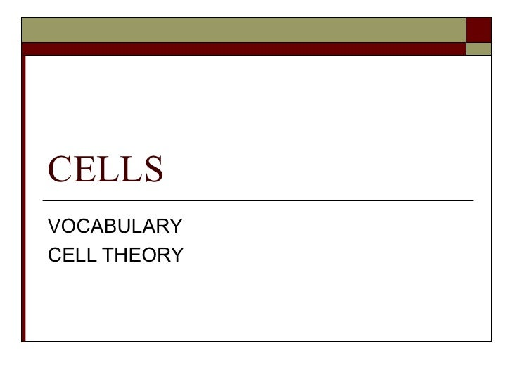 CELLS VOCABULARY CELL THEORY