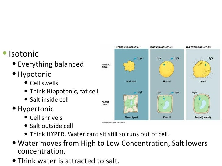 how to change cell on salt mate
