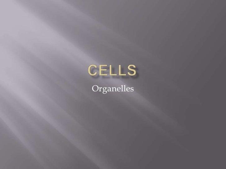 Cells Part 2