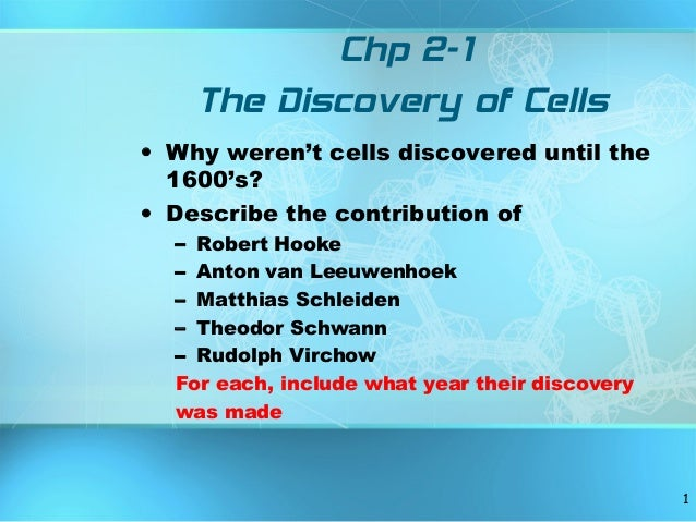 Chp 2-1 The Discovery of Cells • Why weren't cells discovered until the 1600's? • Describe the contribution of – Robert Ho...