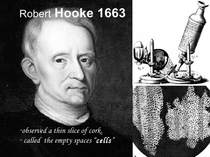 Resultado de imagen de Robert Hooke