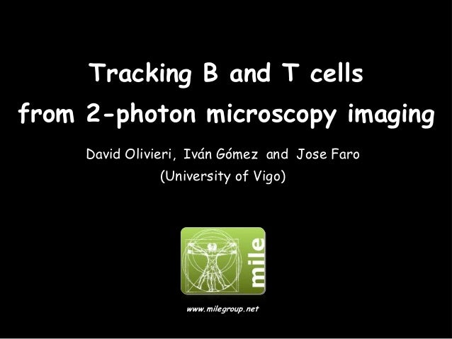 Tracking B and T cells from 2-photon microscopy imaging David Olivieri, Iván Gómez and Jose Faro (University of Vigo) www....