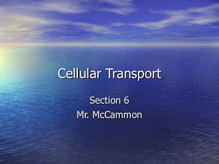 Cellular Transport Section 6 Mr. McCammon
