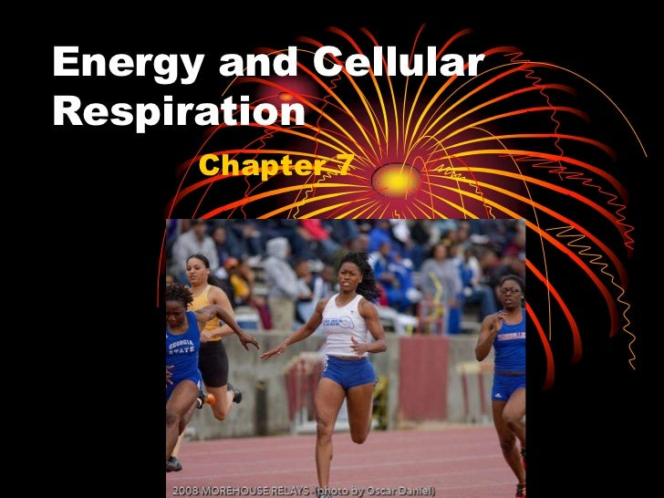 Energy and CellularRespiration      Chapter 7