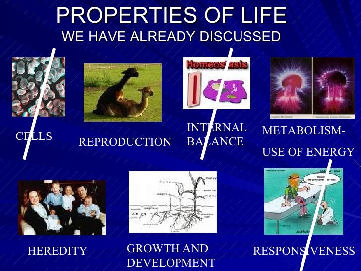 PROPERTIES OF LIFE WE HAVE ALREADY DISCUSSED CELLS REPRODUCTION METABOLISM-  USE OF ENERGY HEREDITY RESPONSIVENESS GROWTH ...