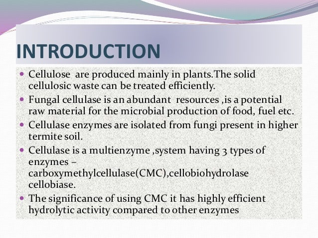 Cellulase enzyme thesis