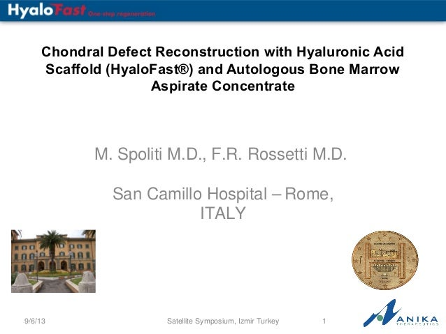 Chondral Defect Reconstruction with Hyaluronic Acid Scaffold (HyaloFast®) and Autologous Bone Marrow Aspirate Concentrate ...