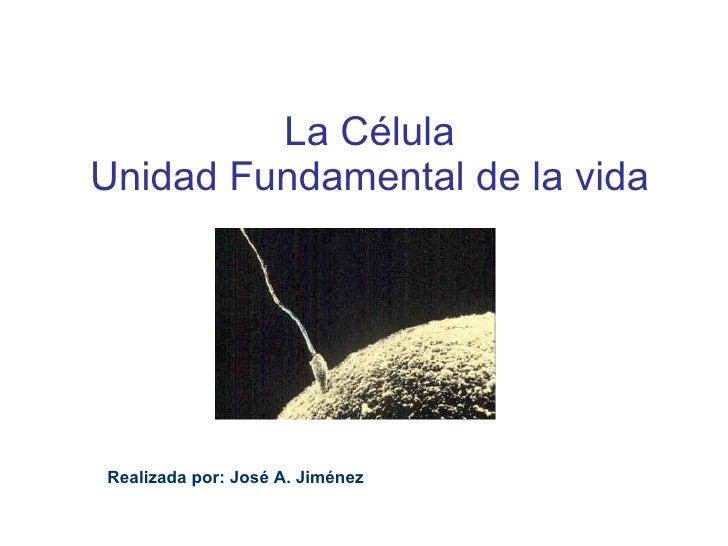 La Célula Unidad Fundamental de la vida Realizada por: José A. Jiménez
