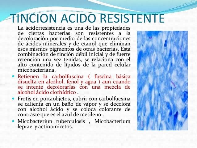 Baños Azul De Metileno:Celula bacteriana