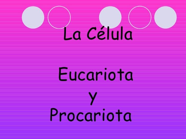 La Célula Eucariota     yProcariota