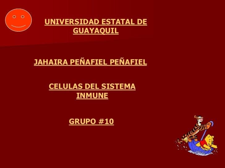 UNIVERSIDAD ESTATAL DE        GUAYAQUILJAHAIRA PEÑAFIEL PEÑAFIEL   CELULAS DEL SISTEMA         INMUNE       GRUPO #10