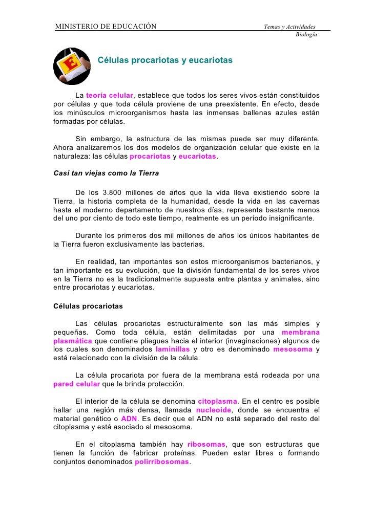 MINISTERIO DE EDUCACIÓN                                       Temas y Actividades                                         ...