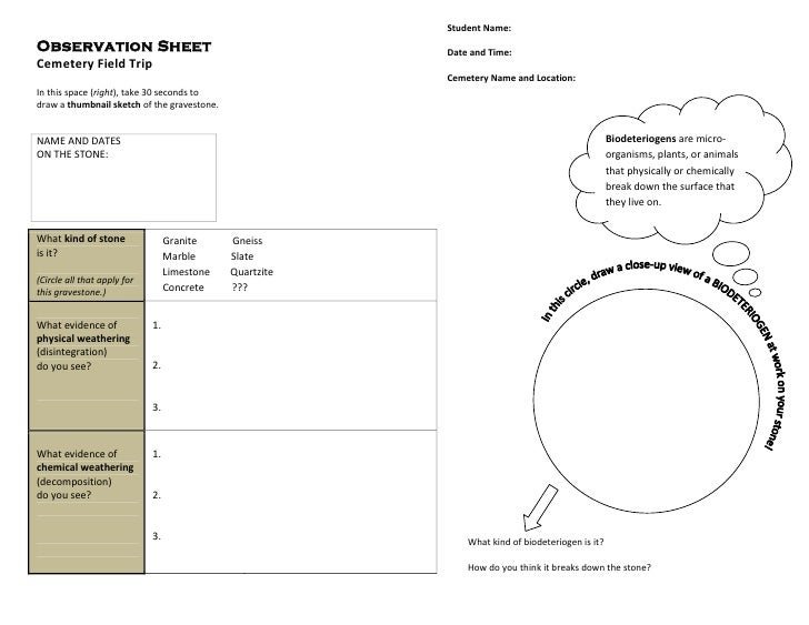 Cemetery Field Trip - Observation Sheet (Earth Systems Science)