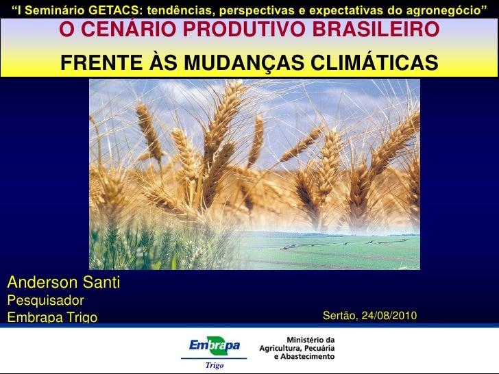 """""""I Seminário GETACS: tendências, perspectivas e expectativas do agronegócio""""        O CENÁRIO PRODUTIVO BRASILEIRO        ..."""