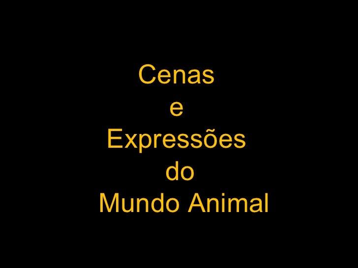 Expressões animais