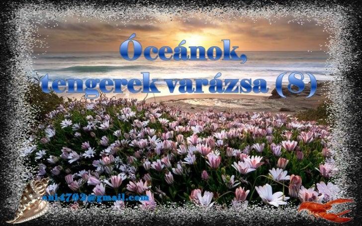 óCeánok, tengerek varázsa(8)+ani (nx power lite)