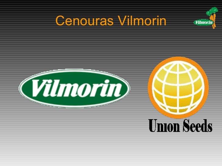 Cenouras Vilmorin