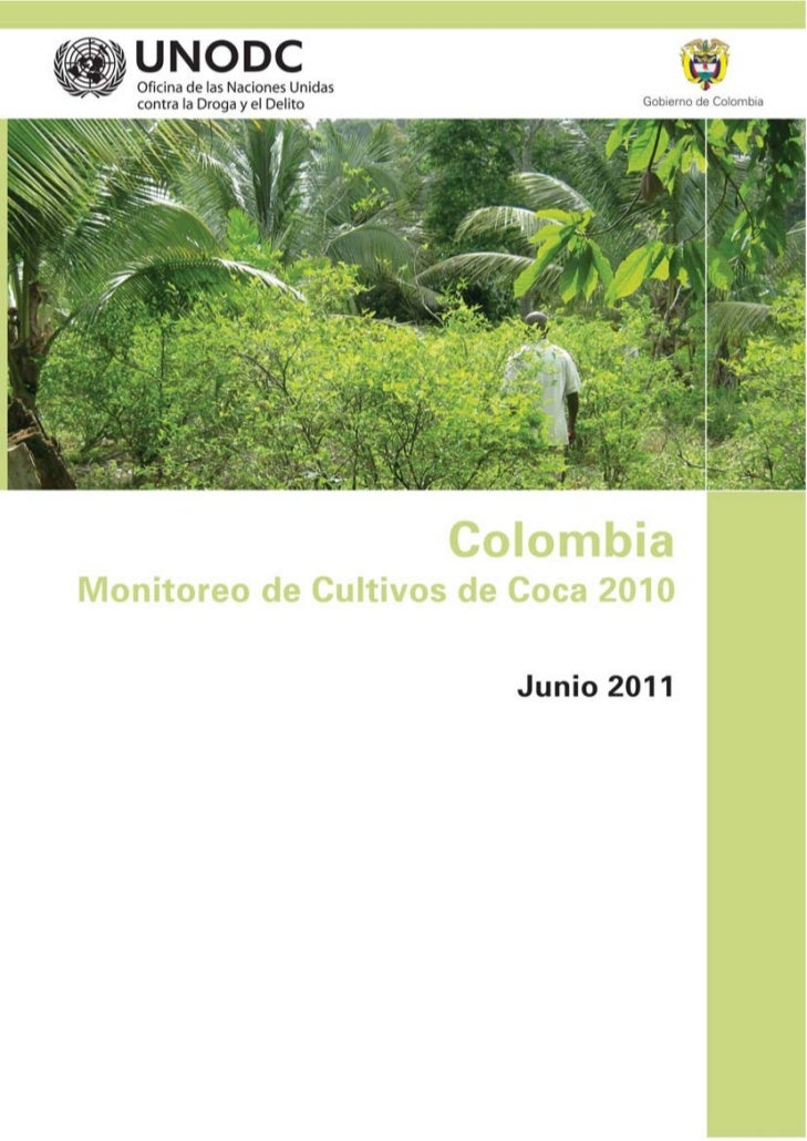 Censo cultivos coca_2010_simci