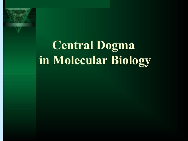 Chapter 12: From DNA to Protein: Genotype to PhenotypeCentral Dogmain Molecular Biology