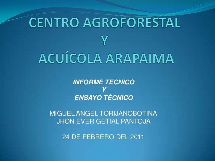 CENTRO AGROFORESTAL Y ACUÍCOLA ARAPAIMA<br />INFORME TECNICO<br />Y <br />ENSAYO TÉCNICO<br />MIGUEL ANGEL TORIJANOBOTINA<...