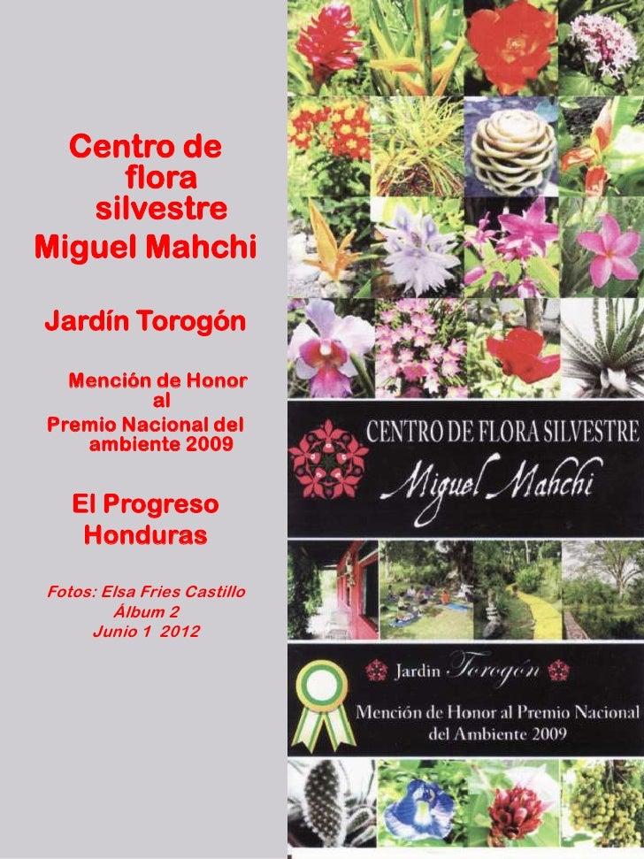Centro de     flora   silvestreMiguel MahchiJardín Torogón  Mención de Honor         alPremio Nacional del   ambiente 2009...