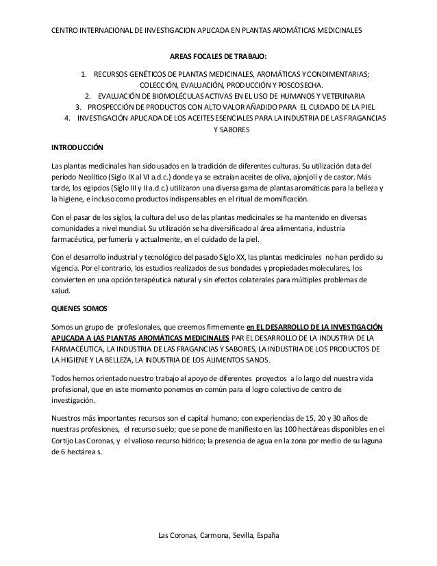 Centro internacional las coronas (ideas fuerza 1)