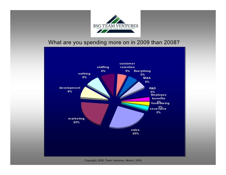 What are you spending more on in 2009 than 2008?                                               custom er                  ...