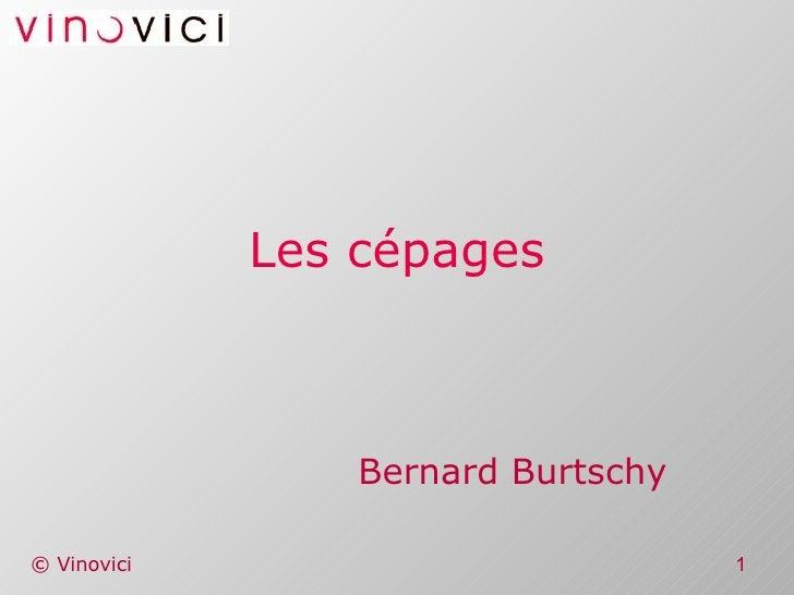Les cépages Bernard Burtschy