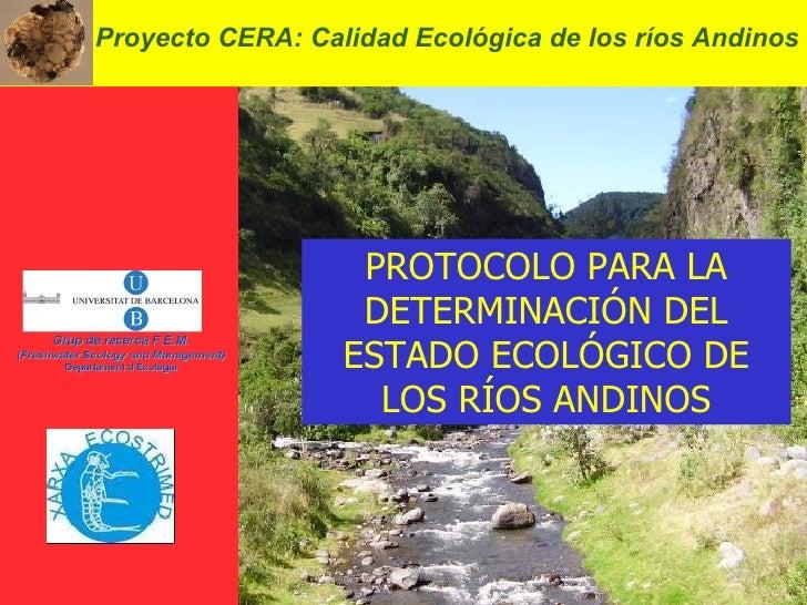 Cera Protocolo3