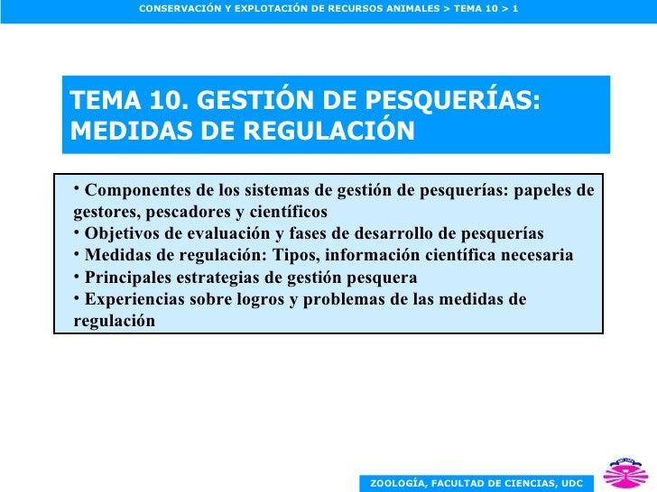 TEMA 10.  GESTIÓN DE PESQUERÍAS: MEDIDAS DE REGULACIÓN <ul><ul><li>Componentes de los sistemas de gestión de pesquerías: p...